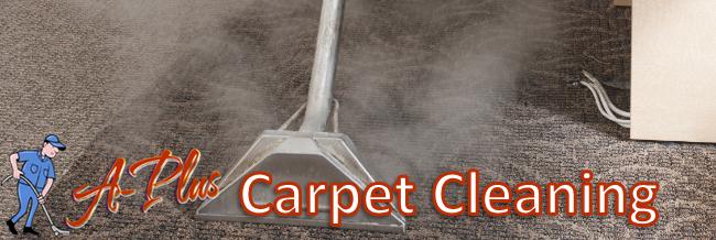 Best Carpet Cleaner In Indianapolis A Plus Carpet