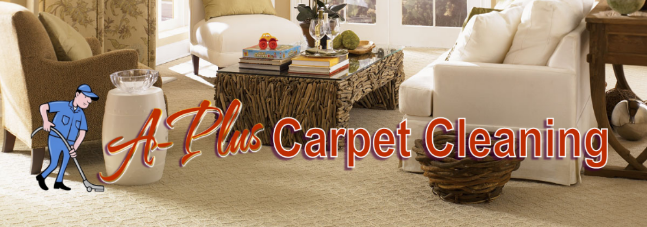 About A Plus Carpet Cleaning