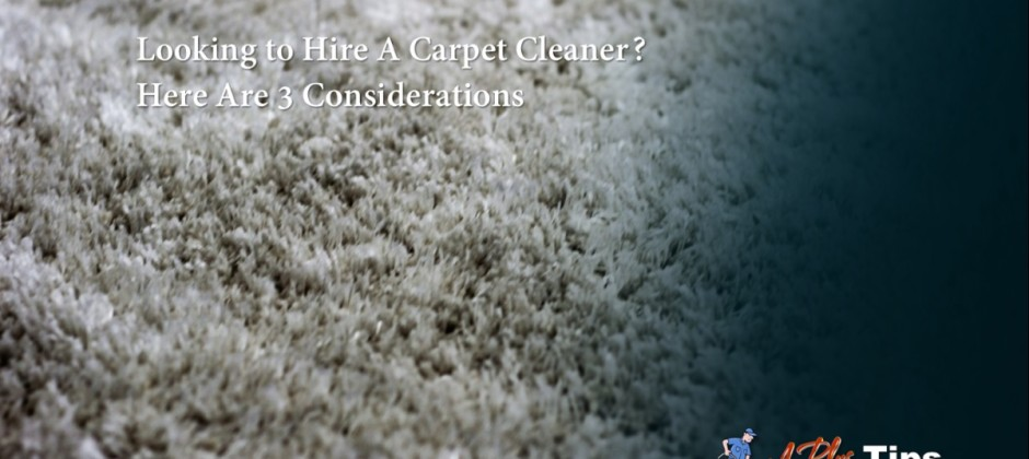 3 Considerations When Hiring A Carpet Cleaner