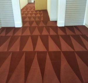 the best carpet cleaning in indianapolis